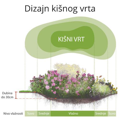 Kišni vrt dendrolog