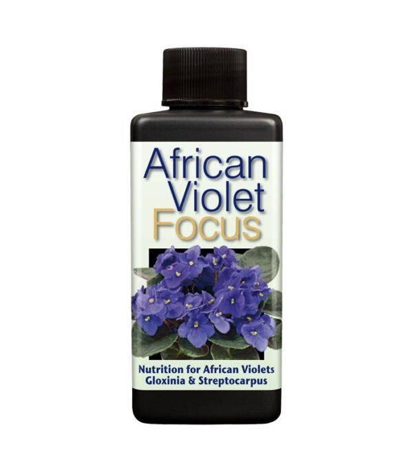 African Violet Focus 100ml Dendrolog