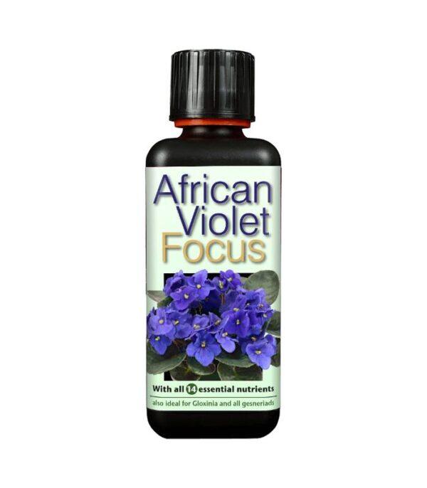 African Violet Focus 300ml Dendrolog