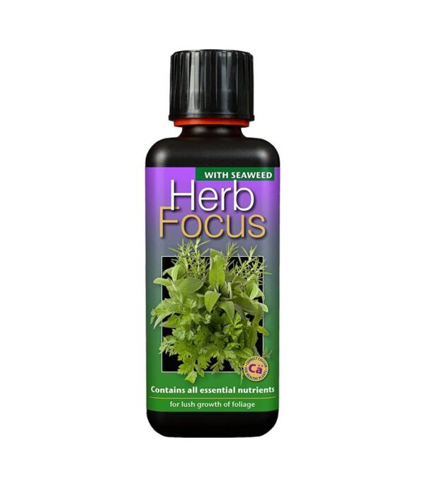 Herb Focus 300ml Dendrolog