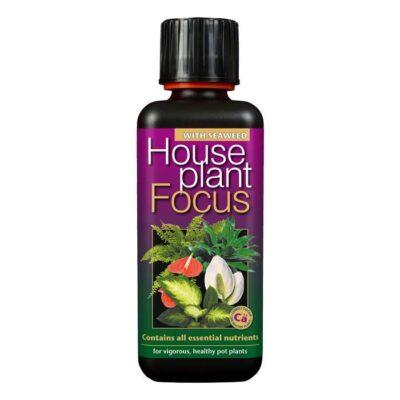 Houseplant Focus 300ml Dendrolog