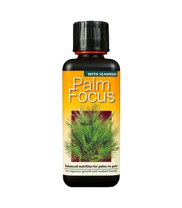 Palm Focus 300ml Dendrolog